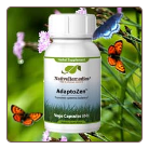 AdaptoZen -For your systemic balance